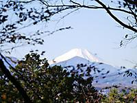 2012_1127_takahatahudo_061_4