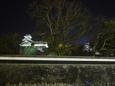 ライトアップに照らし出される熊本城